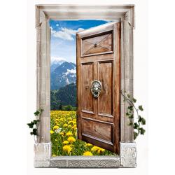 Двери уличные (Смотреть)