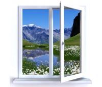 Окно Enwin двухстворчатое 60 мм двухкамерное